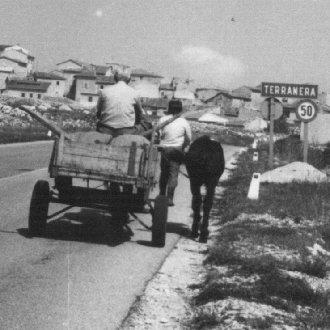 Le foto di Terranera - Il carretto