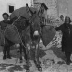 Le foto di Terranera - La Semara de Zi Antonina