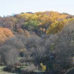 Le foto di Terranera - I colori dell'autunno