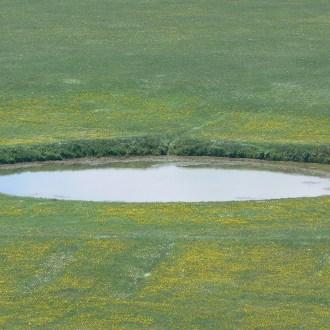 Le foto di Terranera - Pozzo Caldaio in primavera