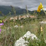 Le foto di Terranera - Primavera con nevicata