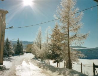 Le foto di Terranera - Fine inverno...
