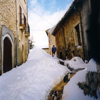 Le foto di Terranera - Montale