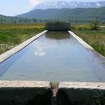 Le foto di Terranera - Il fontanile alle prata