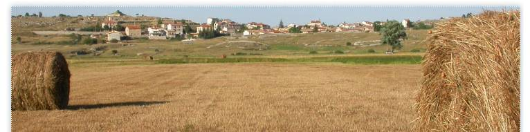 Terranera OnLine - Rotoballe in Agosto